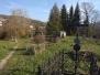 Sprzątanie Cmentarza